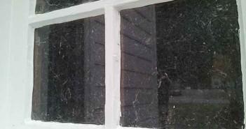 Hoarder Window Tyler Scott
